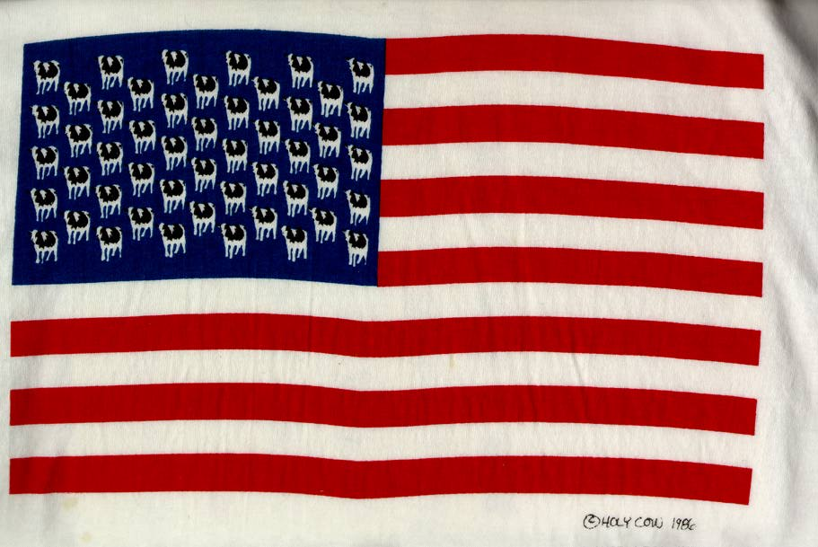 american flag background. (description) American flag